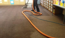 Melbourne_Carpet_Cleaning_image1